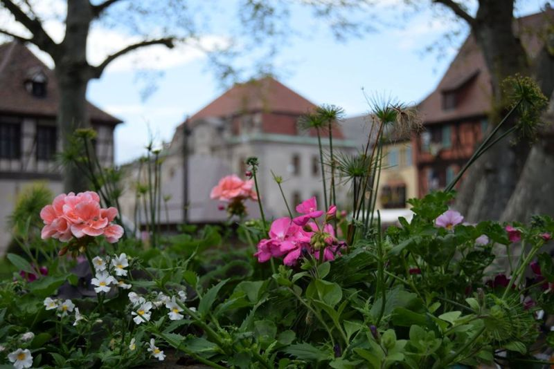 Colmar-fairy tale city where time stands still